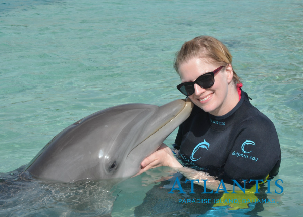 This dolphin could not keep her snout off of me at Atlantis | Books I Read While on Vacation by @letmestart